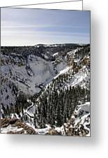 Above The Tree Line Greeting Card