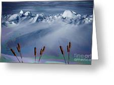 Above The Tree Line Greeting Card by The Stone Age