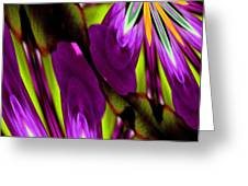 Abstract A03 Greeting Card
