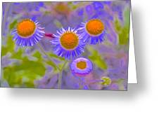 Abstract Blooms Greeting Card