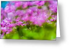 abstract Blurry pink flower background for backgrounds Greeting Card