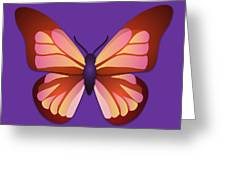 Butterfly Graphic Orange Pink Purple Greeting Card
