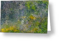 Abstract By Nature Greeting Card