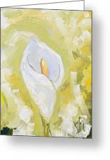 Abstract Calla Lily Greeting Card