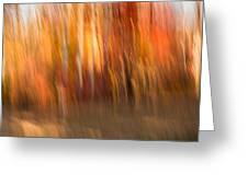 Abstract Fall 6 Greeting Card