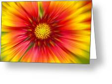 Abstract Flower A Greeting Card
