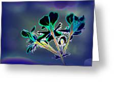 Abstract Flower - Digital Abstract Greeting Card