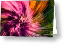 Abstract Flower Spiral Greeting Card