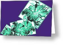 Abstract Fusion 244 Greeting Card