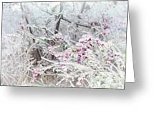 Abstract Ice Covered Shrubs Greeting Card