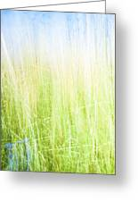 Abstract In Green And Blue. Greeting Card by Brian Scantlebury
