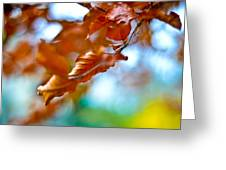 Abstract Leafs Greeting Card