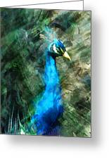 Abstract Marker Sketch Of Peacock Greeting Card