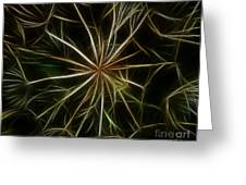 Abstract Of Nature 2 Greeting Card