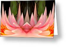 Abstract Pink Water Lily Greeting Card