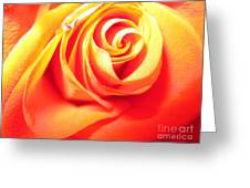 Abstract Rose 2 Greeting Card