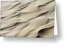 Abstract Sand 7 Greeting Card by Arie Arik Chen