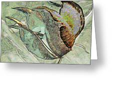 Abstract Seed Pod 1 Greeting Card