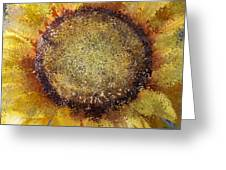 Abstract Sunflower Greeting Card