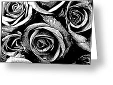 Dark Star Roses For David Bowie Greeting Card