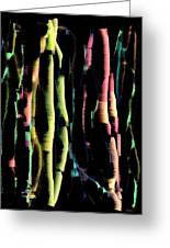 Abstract Vertical Designs Greeting Card by Mario Perez