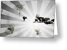 Abstract Vintage Cows Greeting Card