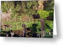 Abstracted Reflection Greeting Card