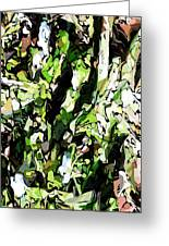 Abstraction Green And White Greeting Card