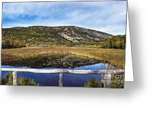 Acadia  Autumn Greeting Card