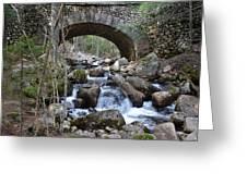 Acadia National Park Bridge Greeting Card