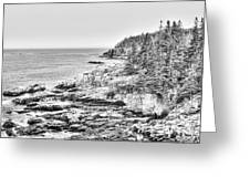 Acadia National Park In Bw Greeting Card