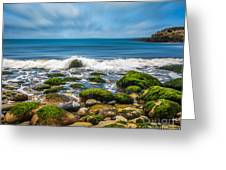 Acadia Ocean Breeze Greeting Card