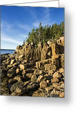 Acadia Seascape Greeting Card