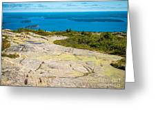 Acadia Views Greeting Card