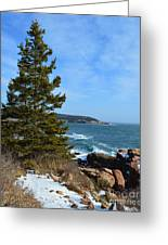 Acadian Shores In Winter Greeting Card