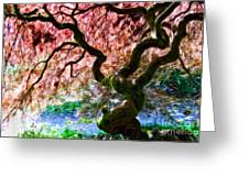 Acer Abstract Greeting Card