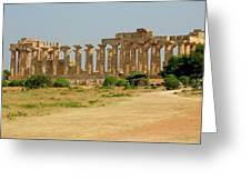 Acropolis Of Selinunte Greeting Card