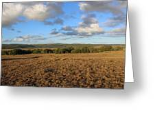 Across The Plains Greeting Card