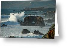 Action On The Rocks Greeting Card