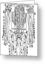 Acupuncture Chart Greeting Card