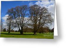 Adare Manor Grounds Greeting Card