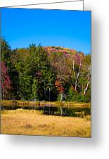 Adirondack Color IIi Greeting Card