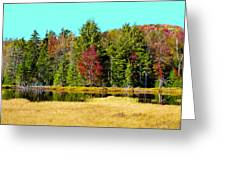 Adirondack Color Iv Greeting Card