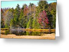 Adirondack Color Near Old Forge New York Greeting Card