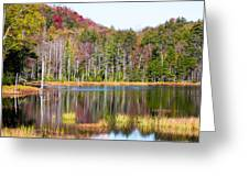 Adirondack Color Viii Greeting Card