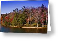 Adirondack Color Xi Greeting Card