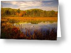 Adirondack Pond II Greeting Card