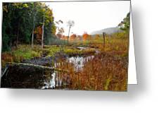 Adirondack Pond Iv Greeting Card