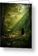 Adirondack Rapture Greeting Card