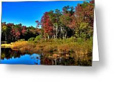 Adirondack Stream In Autumn Greeting Card